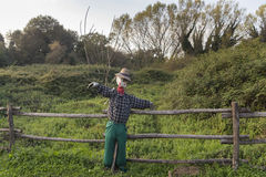 Scarecrow in a vegetable garden in a countryside Stock Photos