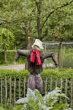Scarecrow in vegetable garden Stock Photography