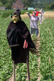 Scarecrows. A couple of scarecrows protecting the field crops against birds Stock Photography