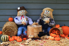 Scarecrows on brake don?t guard harvest and crow eat corn Royalty Free Stock Photo