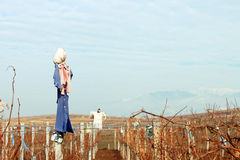 Scarecrows. Dressed as women standing in a dry vineyard. Mountains on the background Stock Photos