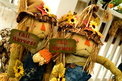 Scarecrows with flowers and hay Royalty Free Stock Photo