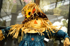 Scarecrows with flowers and hay Royalty Free Stock Photos