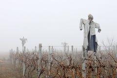 Scarecrows i dimman Fotografering för Bildbyråer