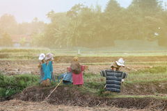 Scarecrows like an image for A man wearing a hat Royalty Free Stock Photography