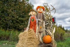 Scarecrows Pumpkins For Sale. Pumpkins For Sale Autumn Fall Decoration Royalty Free Stock Photography