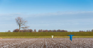 Scarecrows in the sown field to discourage the birds Royalty Free Stock Photography