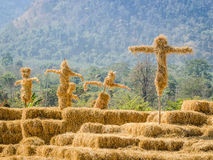 Scarecrows stand together in the garden Stock Photography
