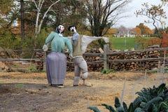 scarecrows två Arkivfoto