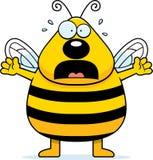 Scared Bee Stock Photos