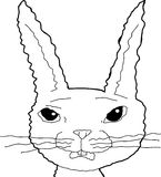 Scared Bunny Cartoon Outline Royalty Free Stock Photography
