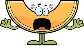 Scared Cartoon Cantaloupe Stock Image