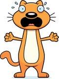 Scared Cartoon Cat Stock Image