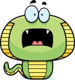 Scared Cartoon Cobra Stock Image