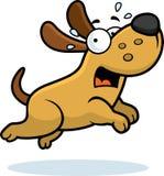 Scared Cartoon Dog Stock Photos