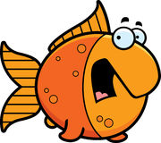 Scared Cartoon Goldfish Stock Photography
