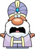 Scared Cartoon Maharaja Stock Images