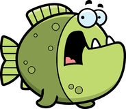 Scared Cartoon Piranha Royalty Free Stock Images