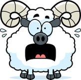 Scared Cartoon Ram Royalty Free Stock Image