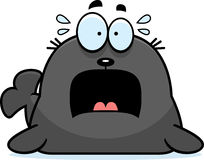 Scared Cartoon Seal Stock Photo