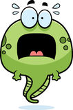 Scared Cartoon Tadpole. A cartoon illustration of a tadpole looking scared Stock Photography