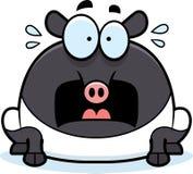 Scared Cartoon Tapir Royalty Free Stock Photo