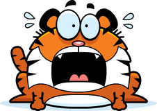Scared Cartoon Tiger Royalty Free Stock Image