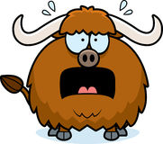 Scared Cartoon Yak Stock Photo