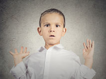 Scared child boy. Closeup portrait headshot scared child, boy hands up in air, opened mouth looking at you camera, isolated grey wall background. Human facial Stock Photos