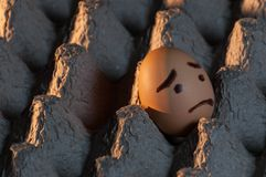A scared egg alone in an egg tray. An egg with a sad face painted on it alone in a cardboard egg tray looking out of the frame Royalty Free Stock Images