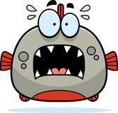 Scared Little Piranha Royalty Free Stock Photography