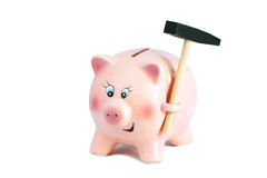 Scared Pretty Piggy Bank With Hammer, Inflation on a White Backg Royalty Free Stock Image
