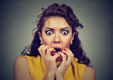 Scared shocked woman isolated on gray background Stock Images