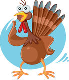 Scared Turkey Funny Vector Cartoon Royalty Free Stock Image