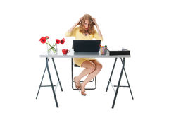 Scares at the office Royalty Free Stock Photo