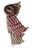 scarf Arkivfoto