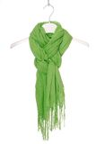 scarf Royaltyfria Bilder