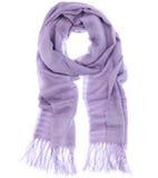 scarf Arkivfoton