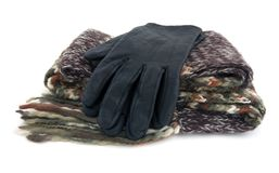 Scarf and Gloves. A scarf made of woolen cloth and black gloves Stock Images