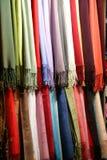 scarfs Royaltyfria Bilder
