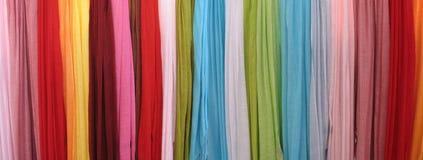 scarfs Royaltyfri Fotografi