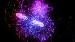 Scariche consecutive dei fuochi d'artificio isolate su fondo nero 3d animazione 3d rendere vicino sulla vista 8 multicolori illustrazione di stock