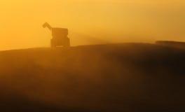 Scarichi il rimorchio durante l'attrezzatura del raccolto, ricevente il grano Fotografie Stock Libere da Diritti