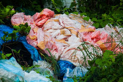 Scarichi la foto del sito per la promozione di riciclano il progetto per il migliore ambiente Immagini Stock Libere da Diritti