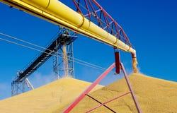 Scarico del cereale Fotografia Stock