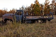 Scarico dell'automobile Fotografie Stock Libere da Diritti