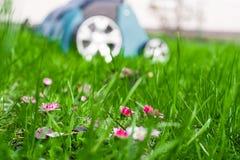 Scarifier on green grass. Work in the garden. scarifier.  Stock Images