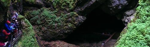 Scarisoara洞 免版税图库摄影
