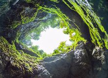 Scarisoara ice cave. Entrance, Apuseni mountains, Romania royalty free stock photography