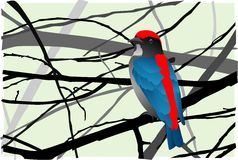 Scarlet-backed Flowerpecker Royalty Free Stock Photography